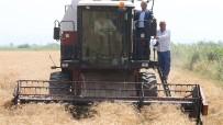 Sağlam 'Stratejik Ürün, Buğdaydan Vazgeçilmemeli'