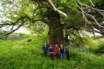 Vali Toraman, Kütahya Ormanlarında İncelemelerde Bulundu