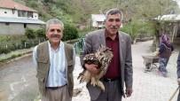 Yaralı Puhu Kuşu Yetkililere Teslim Edildi