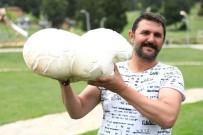 BAĞBAŞı - Bin 500 Rakımda 7 Kiloluk Dev Mantar Şaşırttı