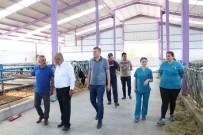 Devlet Desteğiyle Kurulan Kooperatif Yılda 600 Ton Süt Üretiyor