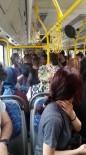 ETILER - Halk Otobüsünde Taciz İddiası