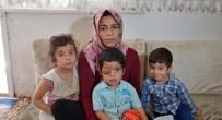 ( Özel) Gözündeki Kitle Giderek Büyüyen Suriyeli Muhammed Tedavi İçin Yardım Bekliyor