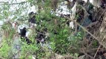KARASU NEHRİ - Karasu Nehri'ne Atılan Çöpler Tepkiye Neden Oldu