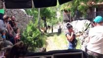 KADIR BOZKURT - 'Mendilim Kekik Kokuyor' Filminin Çekimlerine Başlandı