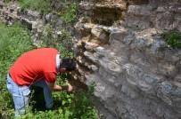 DENİZ CANLILARI - (Özel) Zonguldak'da Dinazorlar Çağından Kalma Deniz Canlılarına Ait Fosiller Bulundu
