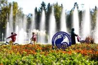 BAĞBAŞı - Büyükşehir Denizli'yi Çiçeklerle Donatıyor