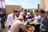 ÇİĞ KÖFTE - Göbeklitepe'de 'Minik Şeflerle Gastronomi Festivali'nde Çiğköfte Kuyruğu