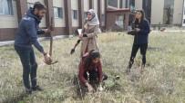 Kafkas Üniversitesi  Öğrencileri Fidan Dikti