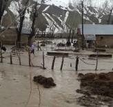 Yüksekova'da Dere Taştı, Evleri Su Bastı