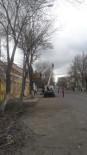 Kars Belediyesi Ağaçları Budama Ve Bakım Çalışması Başlattı