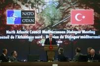 Zeytin Dalı Harekatı - Cumhurbaşkanı Recep Tayyip Erdoğan Açıklaması