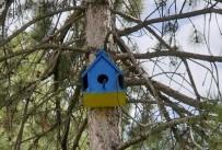 Kuşlar İçin Rengarenk Yuvalar Yaptılar