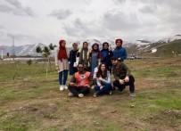 Tatvan'da Fidan Dikim Etkinliği