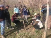 Yüksekova'da Çiftçilere Eğitim