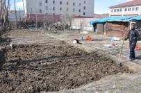 Yüksekova'da Havalar Isındı, Toprağa Tohumlar Atılmaya Başlandı