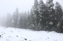 Bolu'da Yüksek Kesimlere Kar Yağdı