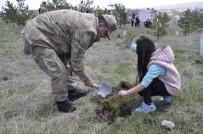 Kars'ta  Jandarma 180. Yıldönümünü Ağaç Dikerek Kutladı