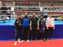 Malatyalı Sporcular Muaythaide Büyük Başarı Elde Etti