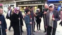 Özgürce Dolaşmanın Püf Noktalarını Öğreniyorlar