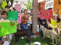ENVER YıLMAZ - 'Bir Pati De Sen Tut' Diyerek Sokak Hayvanlarına Umut Oldular