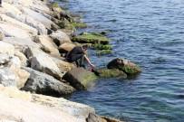 OLAY YERİ İNCELEME - Salacak Sahilinde Erkek Cesedi Bulundu