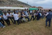Beğişliler 19'Uncu Geleneksel Piknik Ve Pilav Şenliği