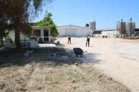Çalıştığı Çiftlik Sahibini Öldüren Bekçi Yakalandı