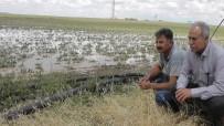 Kulu'da Dolu Yağışı Sonrası Hasar Tespiti Yapıldı