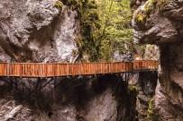 AVUSTURYA - Küre Dağları Milli Parkı'na 'Platin Yabanıl Sertifika'Sı