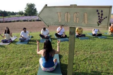 'Lavanta' Tarlasında Yoga İle Güne Başladılar