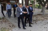 BELEDİYE MECLİS ÜYESİ - Bektaş Demir, Nevşehir Belediye Başkan Yardımcısı Olarak Atandı