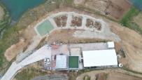 SIBIRYA - Bölgenin En Büyük AR-GE Tesisinde, Balıklar Üretime Alınıyor