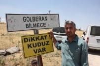 Diyarbakır'da Kuduz Alarmı