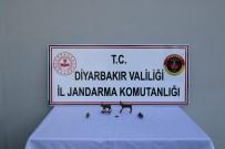 BRONZ HEYKEL - Diyarbakır'da, Roma Dönemine Ait 4 Heykel Ele Geçirildi
