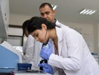 HACETTEPE ÜNIVERSITESI - (ÖZEL) Kastamonu Üniversitesi, İthal Edilen Peyniri Yaptığı Çalışmayla Millileştirecek