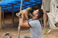 KALP MASAJI - Sel Sularına Kapılan Yavru Köpekleri Gözünü Kırpmadan Kurtardı