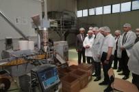Yozgat Valisi Çakır OSB'de İncelemelerde Bulundu