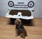 İSTANBUL AĞIR CEZA MAHKEMESİ - (Özel) Narkotik Köpeğinden Bingo