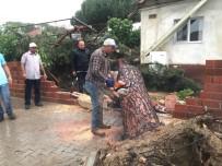 Fırtına Yüzünden 50 Yıllık Ağaç Yan Evin Terasına Düştü
