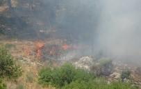 HELIKOPTER - Hatay'da Habib-İ Neccar Dağı'nda Orman Yangını