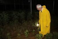 Yozgat'ta Şiddetli Yağış Ekili Alanlara Zarar Verdi