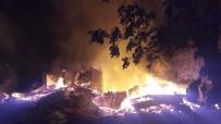 Artvin'in Yusufeli İlçesi Dokumacılar Köyündeki Yangın