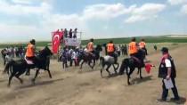 AT YARIŞI - Diyarbakır'da Rahvan At Yarışları Yapıldı