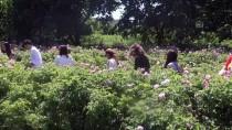 Isparta 'Kozmetikte Markalaşmayı' Hedefliyor