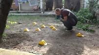 Kırıkkale'de Damat Dehşeti Açıklaması Kayınpederini Yaraladı, Etrafa Ateş Açtı