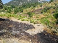 KOZCAĞıZ - Semaverden Yangın Çıktı