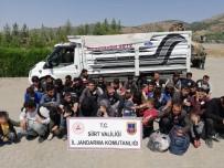 TRAFİK KANUNU - Siirt'te 40 Düzensiz Göçmen Yakalandı