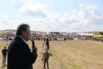 AK Parti Giresun Milletvekili Öztürk'ten Hemşehrilerine Destek Çağrısı
