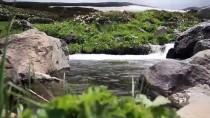 AHŞAP EV - Demirkapı Yaylası'nda Dört Mevsim Bir Arada